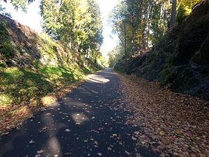 Dutchess Rail Trail - Dutchess Rail Trail in the Fall
