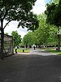 Early summer in Victoria Park (6) - geograph.org.uk - 1885752.jpg