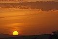 Eastern Serengeti 2012 05 31 3038 (7522610866).jpg
