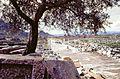 Efes'te antik yol.jpg