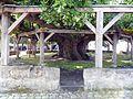 Effeltrich-Gerichtsplatz mit Linde im Vorfeld mit Ummauerrung und doppeltem Holzstützenkranz-29052012.JPG