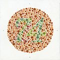 Eight Ishihara charts for testing colour blindness, Europe Wellcome L0059158.jpg
