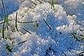 Eiskristalle IMG 1627-2a.jpg