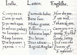 Christopher Nugent - Irish-Latin-English phrase book compiled by Sir Christopher Nugent for Elizabeth I of England.