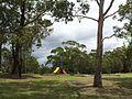 Engadine NSW 2233, Australia - panoramio (216).jpg