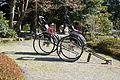Engakuji-kamakura-rickshaws.jpg