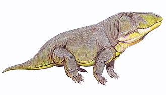 Olenekian - Erythrosuchus