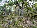 Eskilstuna 325 1, Fornborg 03.JPG