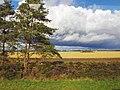 Estonia - panoramio (2).jpg