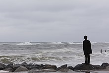 Loneliness Human Nature And The Need For Social Connection Wiki