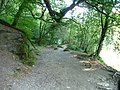 Exmoor , Riverside Path in Tarr Steps Woods - geograph.org.uk - 1507669.jpg