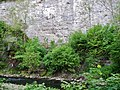 Eyach in Haigerloch - panoramio (1).jpg
