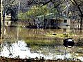 FEMA - 1054 - Photograph by Andrea Booher taken on 03-15-1998 in Georgia.jpg