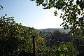 FOREST (2011-10-08 16-13) - panoramio.jpg