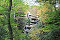 FallingWaters fall colors - panoramio (20).jpg