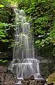 Falls Harmby near Leyburn 8881.jpg
