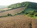 Farmland, Saunderton - geograph.org.uk - 957316.jpg