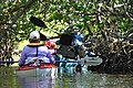 Feb. Kayak Paddle (8) (15961510054).jpg
