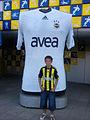 Fenerbahçe 2010-11 Third Shirt.jpg