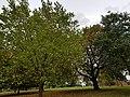 Finsbury Park 20171002 152638 (49370326047).jpg