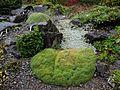 Flickr - brewbooks - Rock garden - green stream (1).jpg