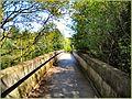 Flickr - ronsaunders47 - Birchwood walkway.WARRINGTON. CHESHIRE UK..jpg