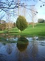 Floods at the Approach Golf Course, Exeter - geograph.org.uk - 1583809.jpg
