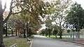 Flushing Meadows Corona Park, Queens, NY, USA - panoramio (1).jpg