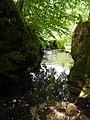 Fontaine des Tufs - Dessus (Les Planches-près-Arbois) (1).jpg