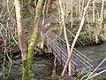 Footbridge over the Clywedog. - geograph.org.uk - 319940.jpg