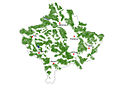 Forest distribution.jpg
