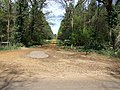 Forestry Track-Road - geograph.org.uk - 406496.jpg