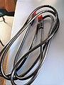 Foto de un cable RJ45.jpg