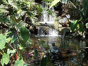 Sarasota, Florida - Marie Selby Botanical Gardens