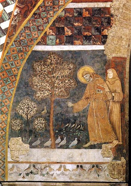 Saint Francis preaching to the birds outside of Bevagna (Master of Saint Francis). Francis preaching the birds.fresco. master of st francis. Assisi.jpg
