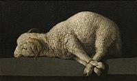 Agnus Dei, 1635- 1640, (38 x 62 cm.), Socorro Madrid