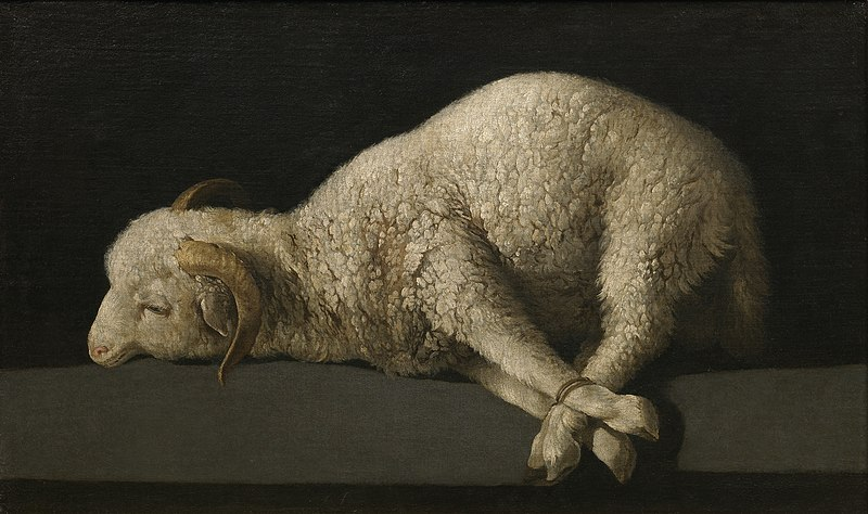 the lamb metaphor Lamb is the symbol of renewal, victory of life upon the death, gentleness, tenderness, innocence it is a perfect victim which should be sacrificed to assure someones salvation the cult of dionysus and his devotees were one of the first to use this symbol.