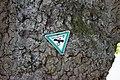 Friedenseiche, Seibelsdorf (MGK12902).jpg