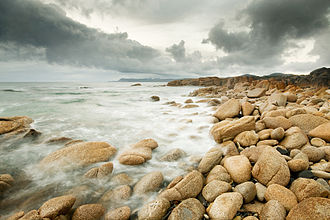 Rocky shore - The rise and fall of tides on a rocky shore can define a volatile habitat for marine life