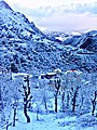 Froid à Tirourda montagne.jpg
