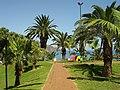 Funchal ( Portugal ) (33115136).jpg
