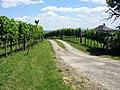 Garabonc, 8747 Hungary - panoramio (4).jpg