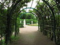 Gatchina Private garden-3.JPG