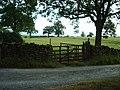 Gate - geograph.org.uk - 209295.jpg