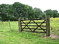 Gate into pasture by Surlingham Staithe - geograph.org.uk - 1420028.jpg