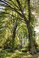 George Tindale Memorial Gardens (10220208044).jpg
