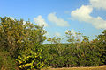 Gfp-florida-biscayne-national-park-road-view.jpg