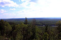 Gfp-minnesota-superior-national-forest-forest-view.jpg