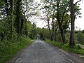 Glasdrumman Road - geograph.org.uk - 436772.jpg