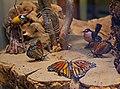 Glass Butterflies (7258088742).jpg